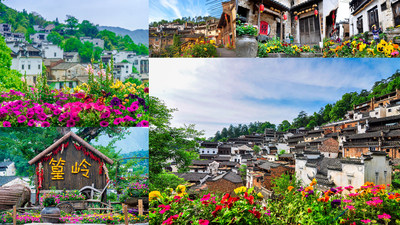 Huangling Sets the benchmark of Chinese Flower Town