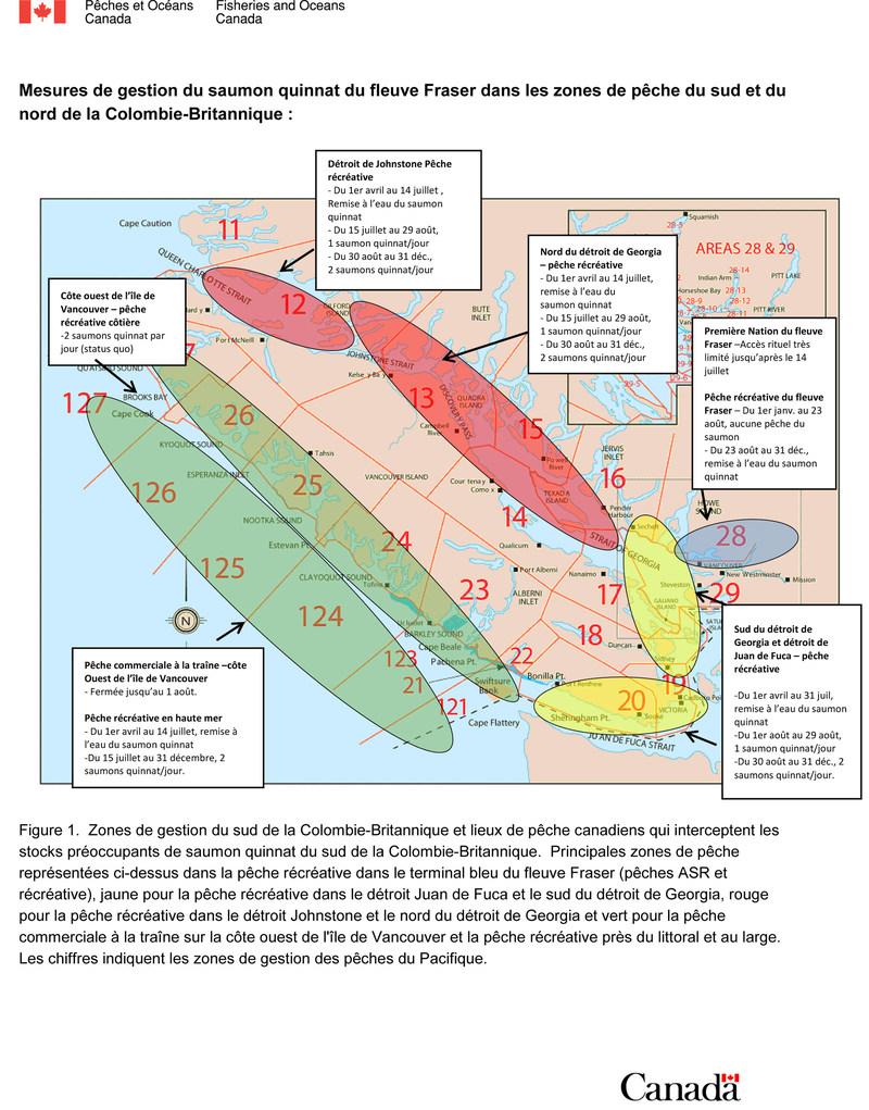 Mesures de gestion du saumon quinnat du fleuve Fraser dans les zones de pêche du sud et du nord de la Colombie-Britannique (Groupe CNW/Pêches et Océans Canada)
