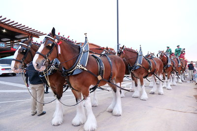 The Budweiser Clydesdales brought Nikola Motor CEO Trevor Milton into Nikola World 2019.
