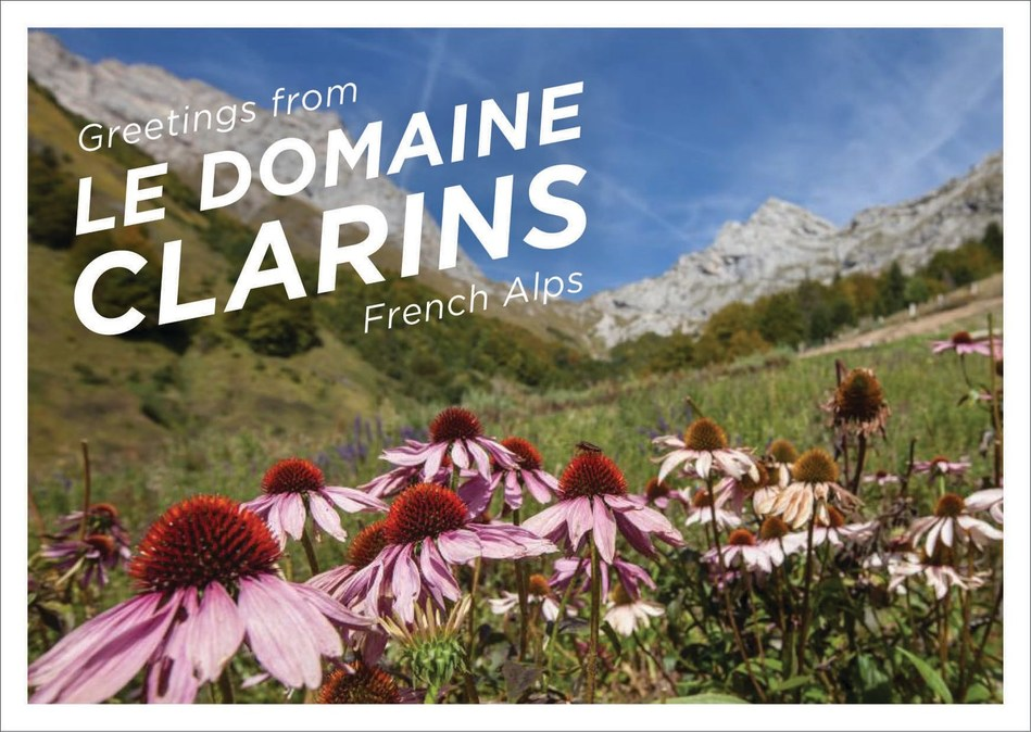 Le Domaine Clarins is a private farm and open lab in the Alps to sustainably source, grow and observe plants.