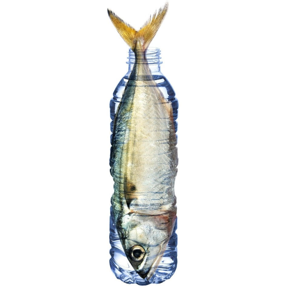 PATHWATER launches 'Fish in a Bottle' Earth Day Campaign to Petition the CA State Assembly Bill AB 1080 to include single-use PET plastic bottles in the state's phase-out of single-use plastics in California.
