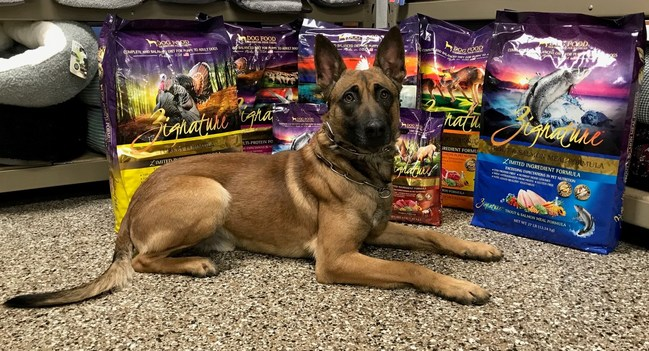 Zignature and Family Pet Food Center Partner to Raise Funds for Green Bay Police Dog Wounded in Action