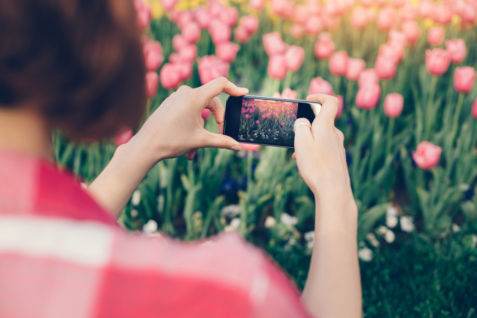 Download the free GrowIt Mobile App to enjoy the Self-Guided Garden Tour (CNW Group/Canadian Tulip Festival)
