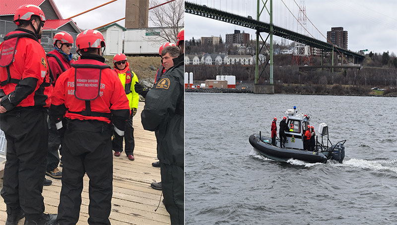 MP Fisher joins fishery officers during Marine Mammal Response Training in Bedford Basin (CNW Group/Fisheries and Oceans Canada, Maritimes Region)