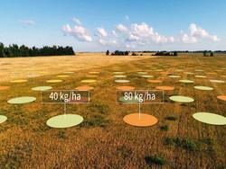 Yara and IBM to deliver the world's most comprehensive global digital farming platform.