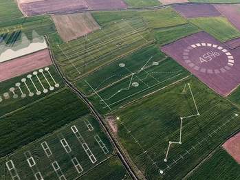 The Digital Farming Platform, built incorporating world-class IBM technology, will allow Yara to create digital twins of the farmers' fields and give farmers actionable insights to drive the improvements through advanced analytics, weather data and satellite images.