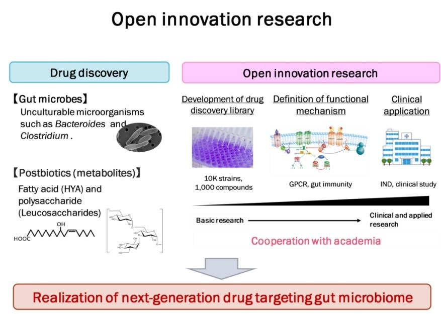 Nitto Pharma's approach to innovation