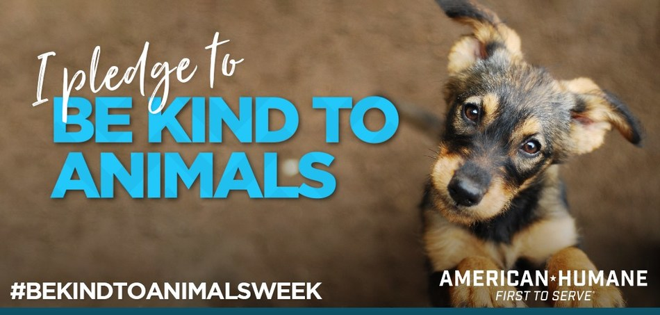 (PRNewsfoto/American Humane)