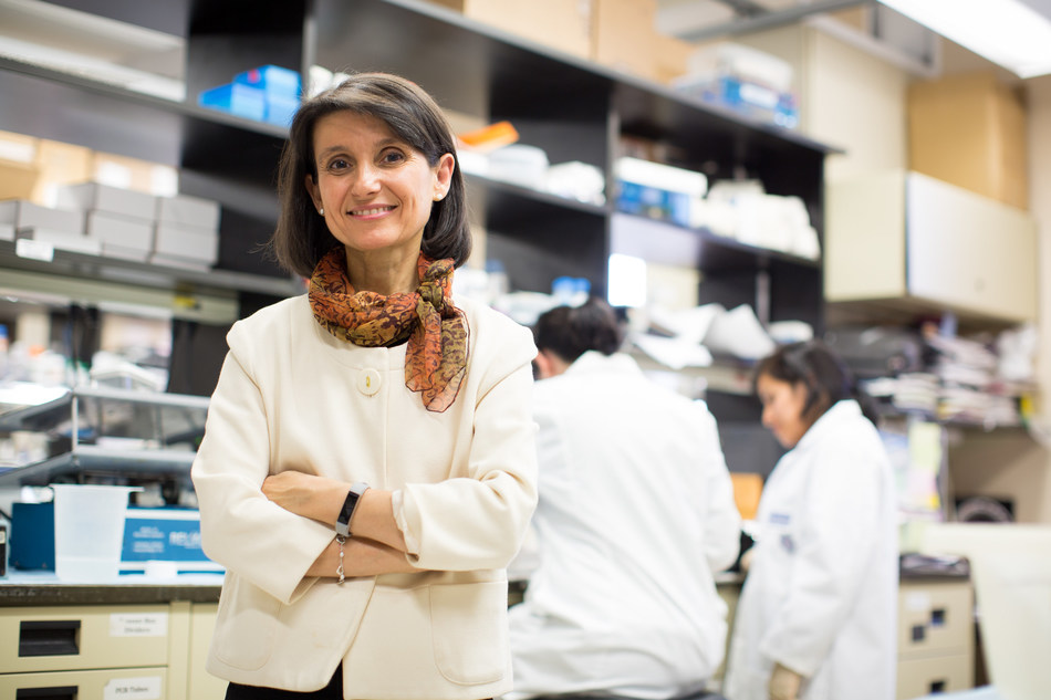 Ana Maria Cuervo, M.D., Ph.D.