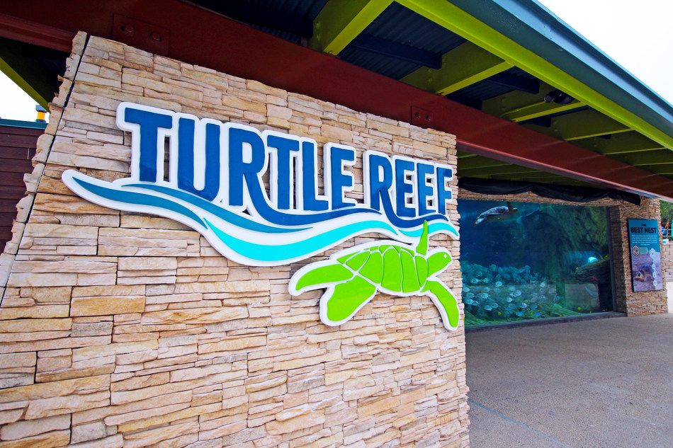 Turtle Reef™ at SeaWorld San Antonio is now open, featuring a first-of-its-kind biofiltration habitat. Guests can get an up-close look at endangered and rescued sea turtles and multi-colored fish, while learning more about the human impact on the oceans. Additionally, the park opened two new thrill rides; Riptide Rescue™ is an exciting rescue adventure, taking families on a mission to help save marine animals and Sea Swinger™, a thrilling high swing ride.