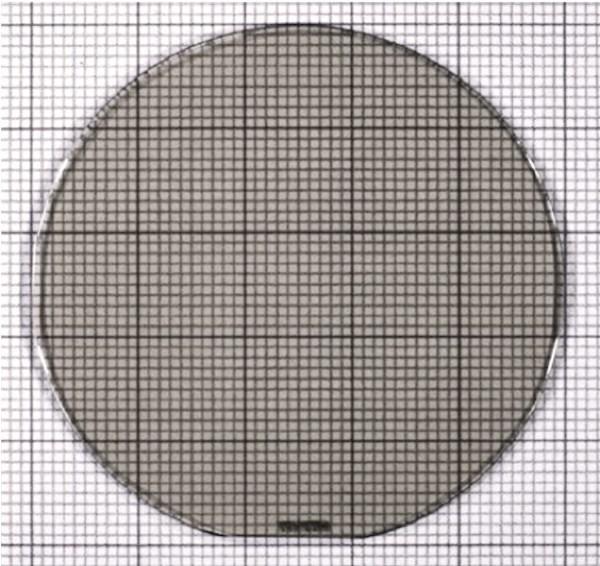Image 1 - Full Substrate Optical Image