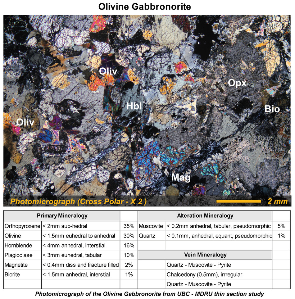 Photomicrograph of the Olivine Gabbronorite from UBC - MDRU thin section study (CNW Group/Metallis Resources Inc.)