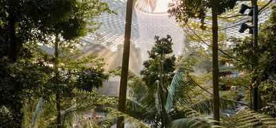 SHISEIDO FOREST VALLEY: Experience the beauty of nature in this lush, tranquil retreat by SHISEIDO in the heart of Jewel Changi Airport.