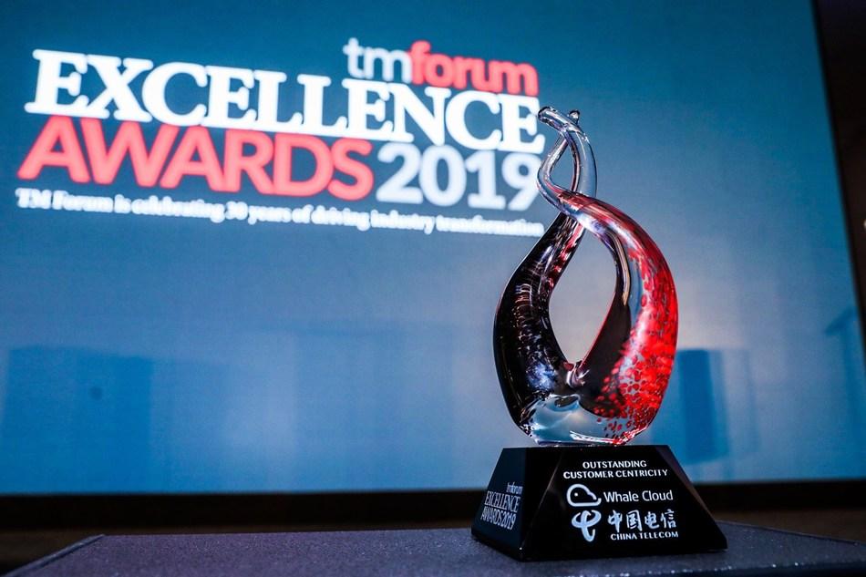Prêmio de Excelência para Foco Extraordinário no Cliente (PRNewsfoto/Whale Cloud)