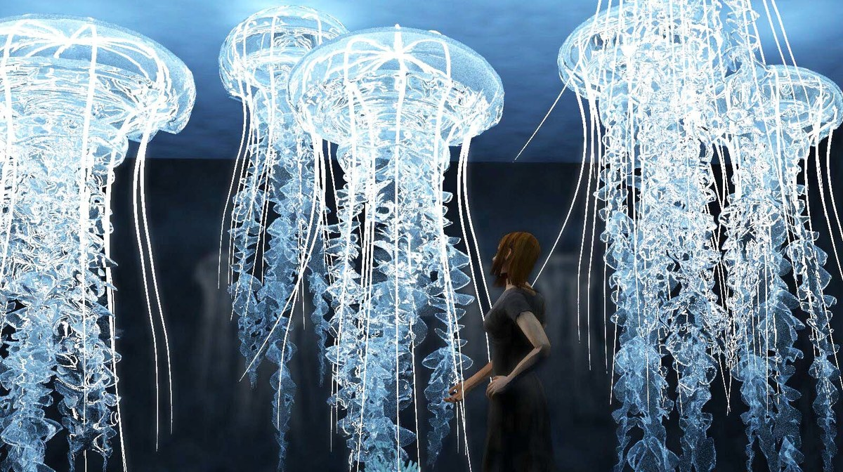 Ocean Cube, The First Oceanic and Immersive Underwater