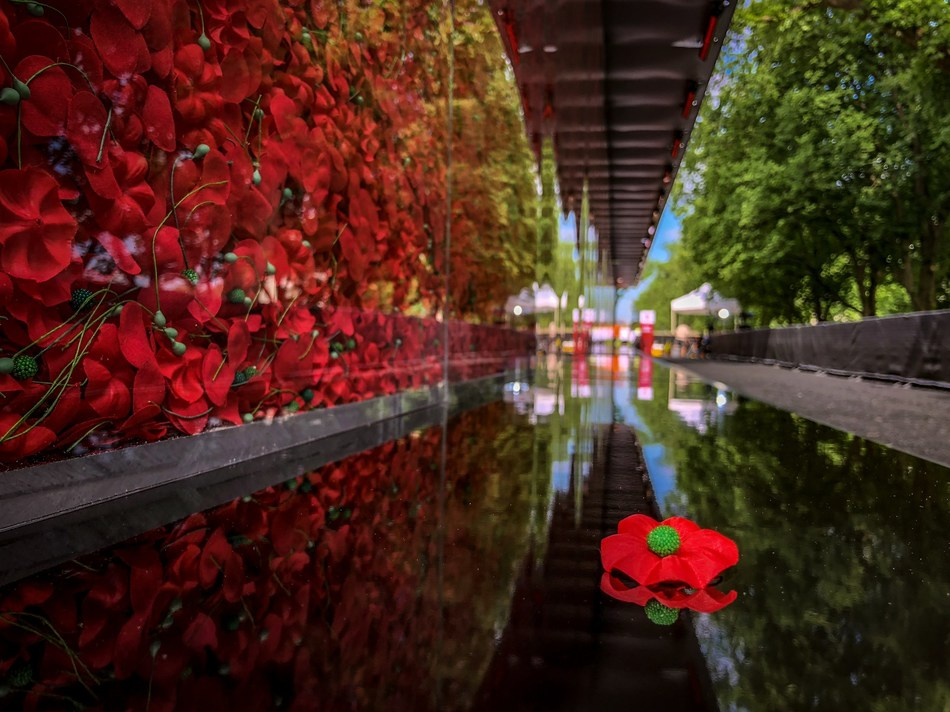 The Poppy Wall of Honor traveled to the National Mall in Washington, D.C. for the first time in May 2018.