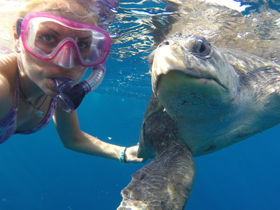 Before starting her PhD, Christine Figgener worked in marine turtle research and conservation in Central America for over a decade. Her ambition is to apply her research findings to the conservation of endangered species, particularly marine turtles. Photo courtesy of Christine Figgener.