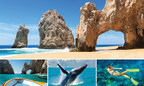 10 Amazing Things to Do in Cabo San Lucas by The Villa Group