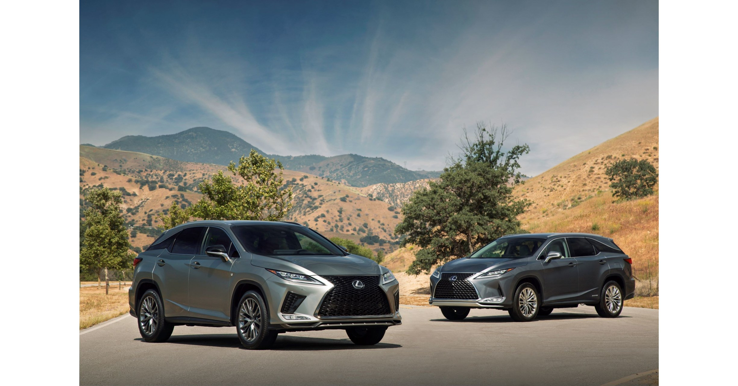 2021 Lexus Rx 350 F Sport Suv Concept and Review