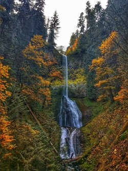 Autumn hikes in the Clackamas Wilderness will take Arizonans to sights such as Pup Creek Falls.