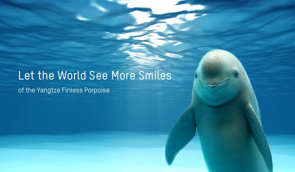 Yangtze Finless Porpoise Banner - Copyright © WWF / Liu Jieyun