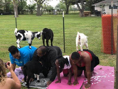 At a Wounded Warrior Project® (WWP) yoga class in Houston, injured veterans and their families connected with each other – and baby goats. Tameka Toussaint, her husband Irvin (U.S. Army), their 7-year-old daughter, and Tameka's sister Tamara, were not deterred by the baby goats' occasional shoelace-chewing. Warriors and families enjoyed meeting new people, yoga and stretching, and plenty of smiles.
