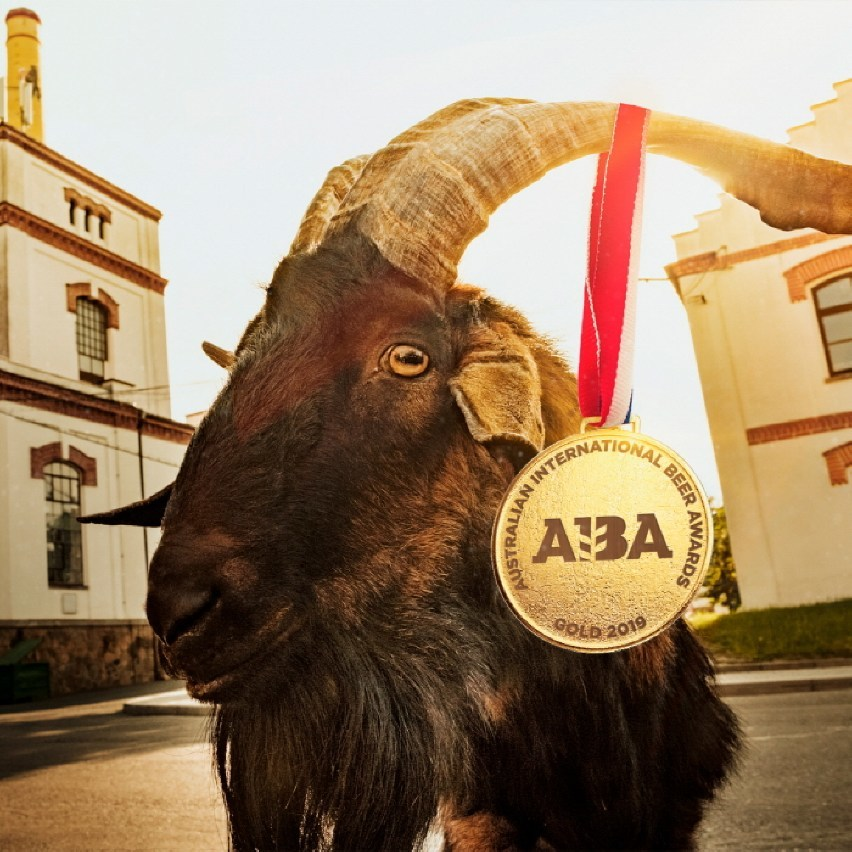 Kozel Dark has won Gold medal in the Dark Beer category at the prestigious Australian International Beer Awards (AIBA) 2019.