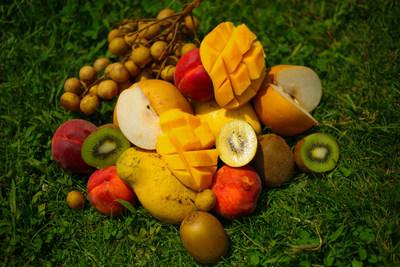 (PRNewsfoto/The Woodstock Fruit Festival)