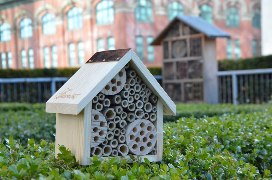 Fairmont Waterfront in Vancouver, Canada was one of the first hotels to offer an onsite bee program. Today, Fairmont offers more than 40 apiaries and wild bee hotels at its luxury hotels around the world. (CNW Group/Fairmont Hotels & Resorts)