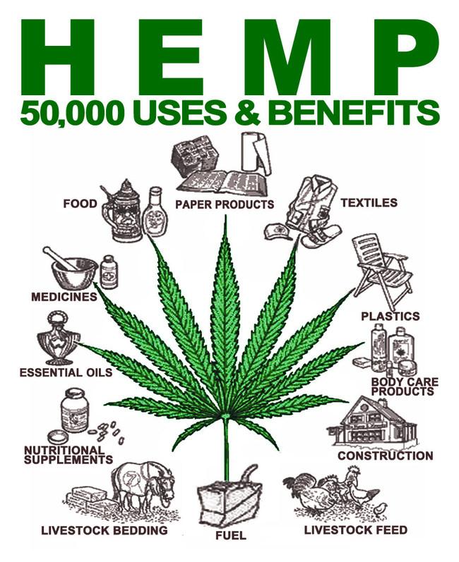 50,000 Uses of Hemp