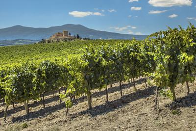 Dégustez le bon vin de la région de Bordeaux grâce au nouveau service saisonnier d'Air Canada au départ de Montréal (Groupe CNW/Air Canada)
