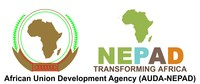 AUDA-NEPAD logo (PRNewsfoto/AUDA-NEPAD)