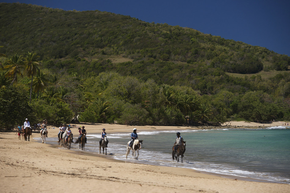 Cluny Beach, the Guadeloupe Islands.
