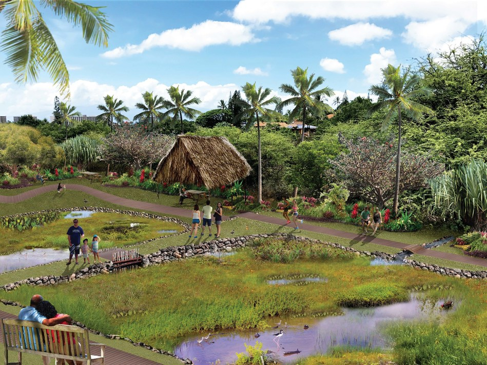 "Honda Marine Science Foundation has awarded grants to fund research projects that address the impact of climate change on the ocean and intertidal areas. To improve coral reef health on West Maui, Hawaii, the Coral Reef Alliance will construct a living shoreline ""green infrastructure"" multipurpose area to reduce pollution from severely degraded watersheds."