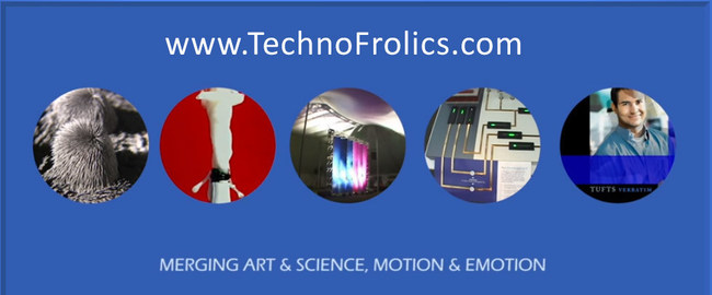 TechnoFrolics combines engineering, art, the natural sciences, and play