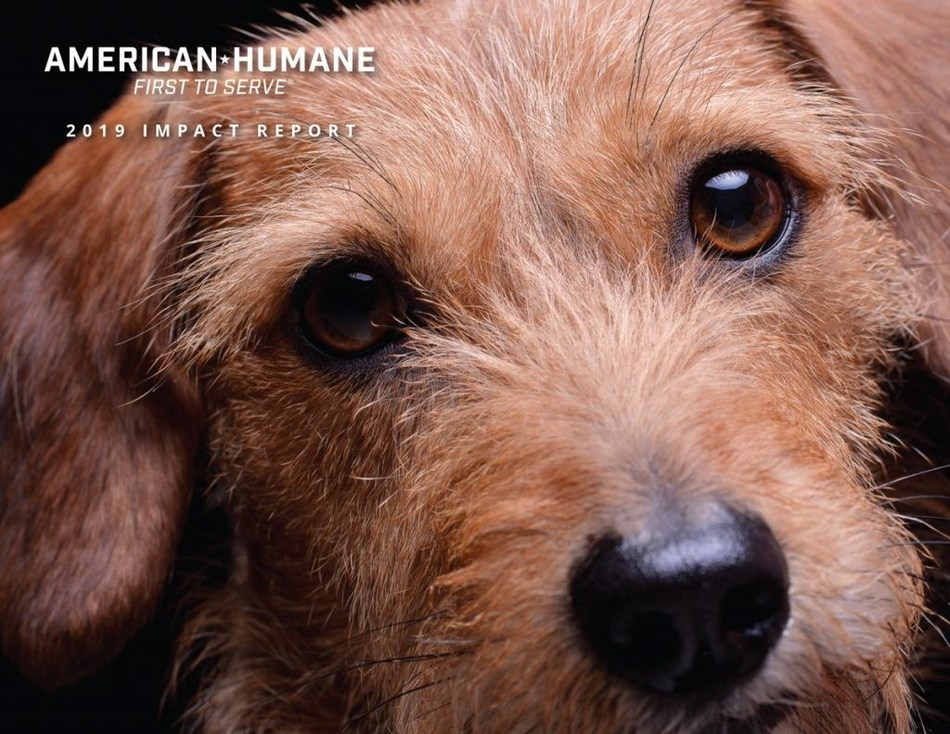 American Humane's new Impact Report details the organization's work over the past year to make a better world for some one billion animals.