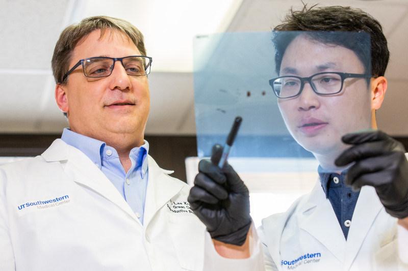 Dr. W. Lee Kraus with Dr. Dae-Seok Kim