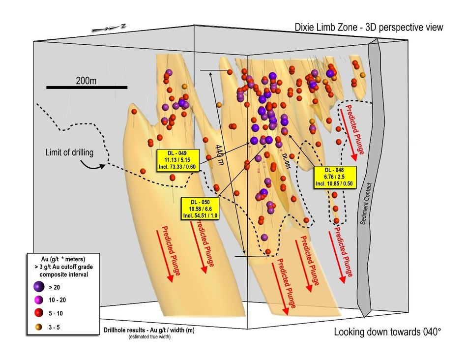 Figure 1: 3D section of Dixie Limb drilling to-date, view to northeast, showing steeply-plunging mineralization and predicted down-plunge high-grade zone geometries.  Maximum vertical drill depth is 450 metres, and all zones remain open to extension.  Limits of current drilling shown with dashed line.  The adjacent Hinge Zone has been removed from the foreground for ease of view. (CNW Group/Great Bear Resources Ltd.)