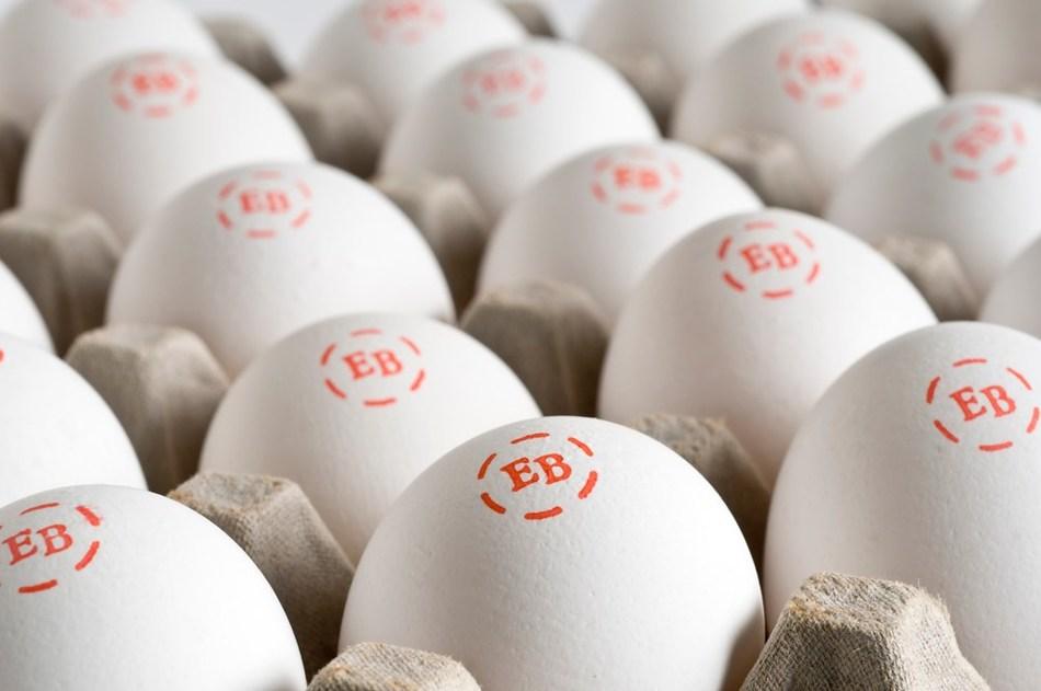 (PRNewsfoto/Eggland's Best)