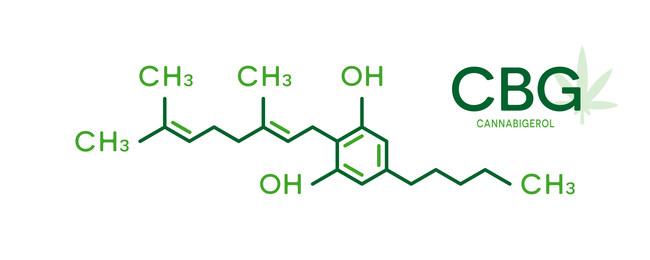 Precision Plant Molecules