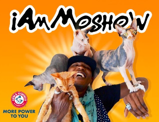 "Cat rapper iAmMoshow and ARM & HAMMER™ release their second single ""Double Duty."" If the video reaches 2 million views by October 31, 2019 Church & Dwight Co., Inc., the maker of ARM & HAMMER™ brand products will make a double donation totaling $20,000 to two cat welfare organizations, ACCT Philly and the Cat Adoption Team."