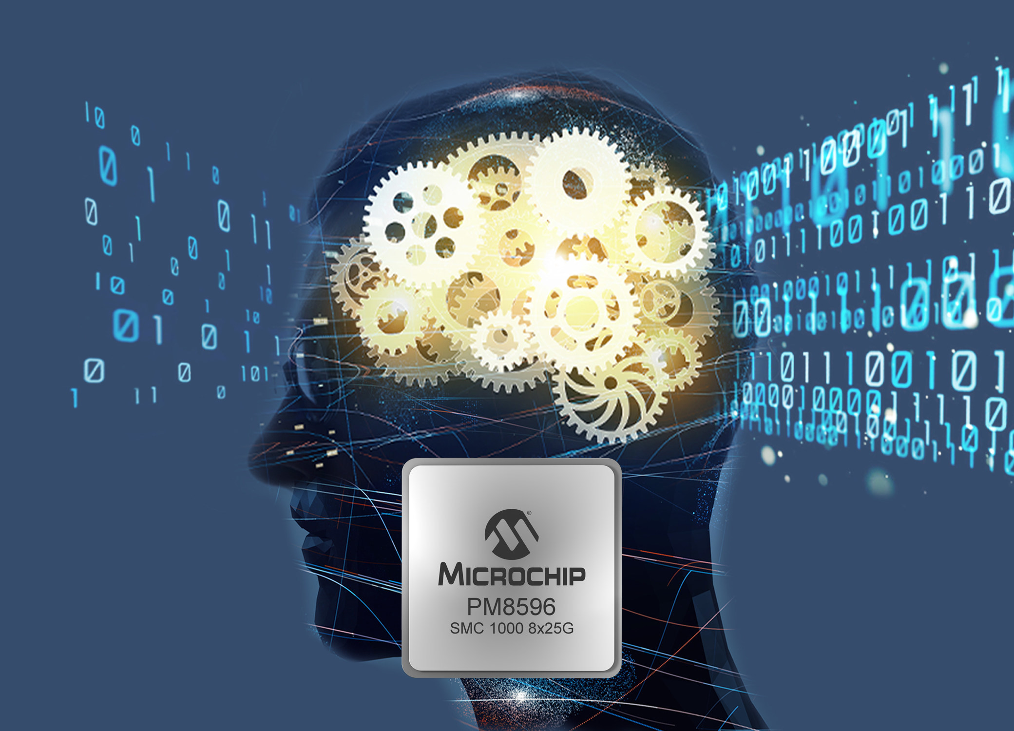 Microchip Enters Memory Infrastructure Market with Serial Memory