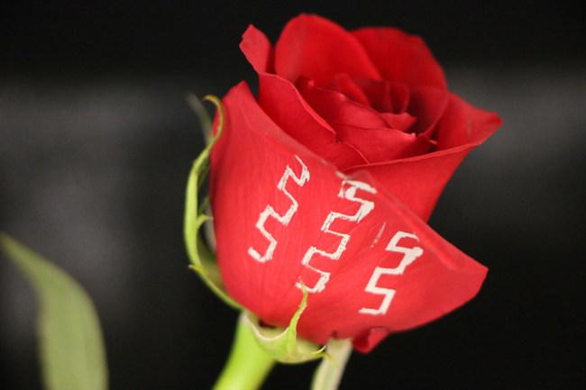 SAFI-Tech's no-heat solder applied to delicate rose petal