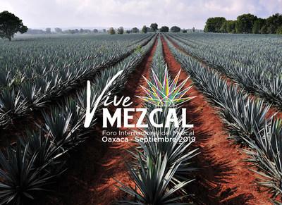 """""""Vive Mezcal 2019"""" el maridaje perfecto de cultura y comercio en Foro Internacional en Oaxaca. (PRNewsfoto/Vive Mezcal 2019)"""