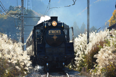 Aboard the Sake Train: a Locomotive Treat Awaits Rugby Visitors to Saitama