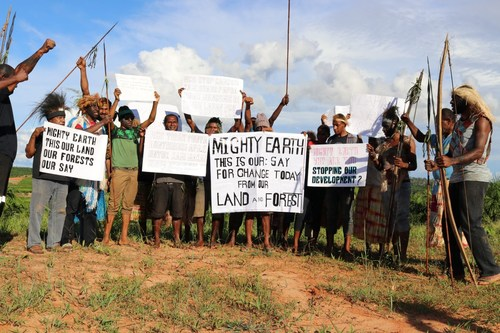 Indigenous peoples in Papua protest against interference from Mighty Earth to develop their land.