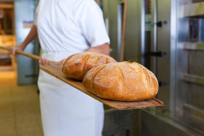 Univar Solutions to Distribute Novozymes Bakery Portfolio in Russia