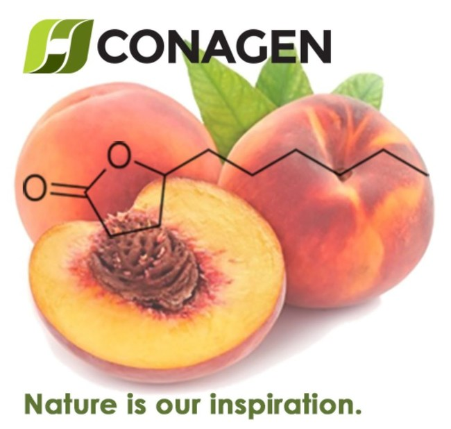 Found in many ripe fruits and particularly peaches, γ-Decalactone is a versatile compound used commercially in formulations with distinctive fruit flavors of peach, apricot and strawberry in food, beverage, fragrance, nutrition, renewable materials, and pharmaceutical markets. (PRNewsfoto/Conagen)