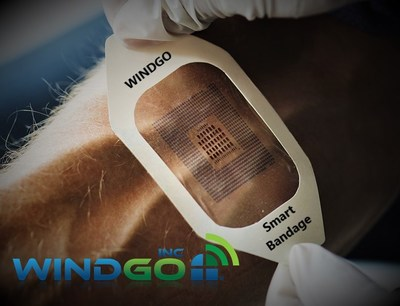 WINDGO Smart Bandage