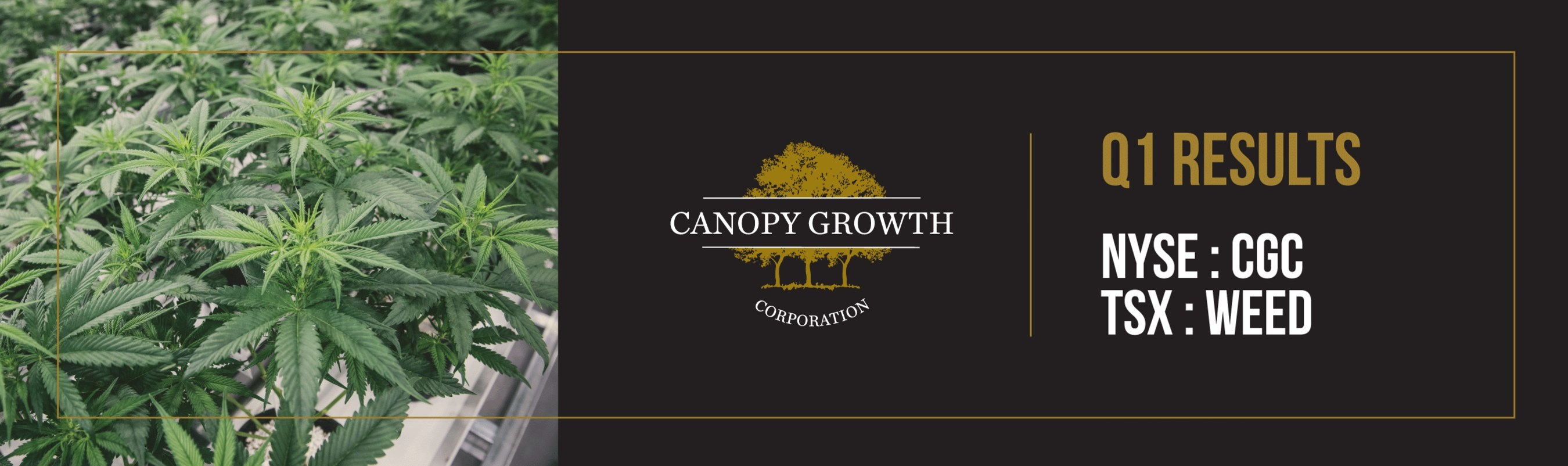 Canopy Growth drives revenue with 94% increase in recreational dried cannabis sales in first quarter of fiscal 2020